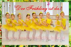 Ballettküken